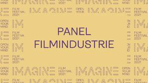 Panel Filmindustrie